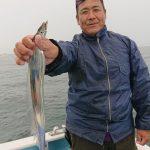 タチウオよく釣れた⤴️⤴️