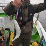 朝からハマチがよくよく釣れた⤴️⤴️